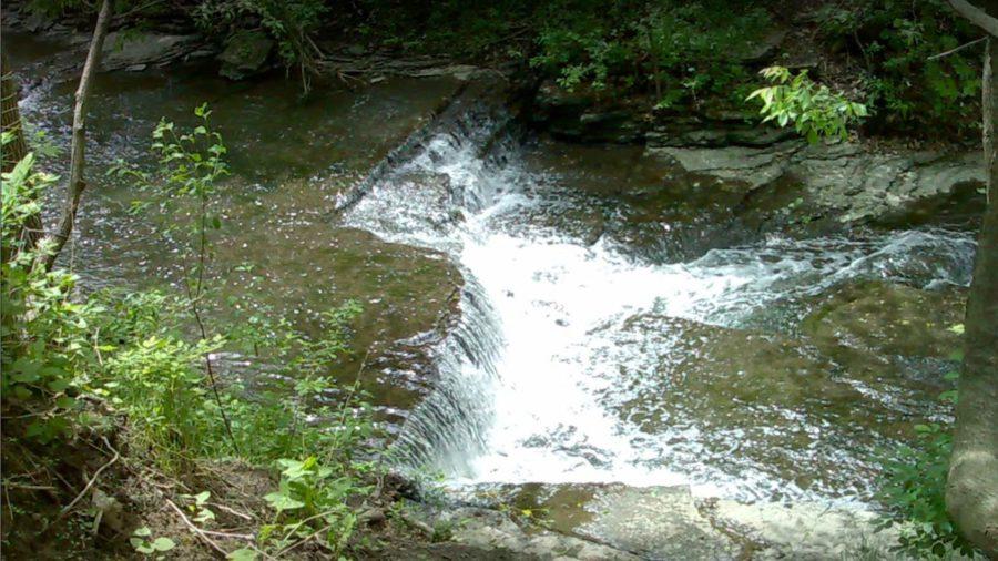 Parc-nature du Ruisseau-De Montigny