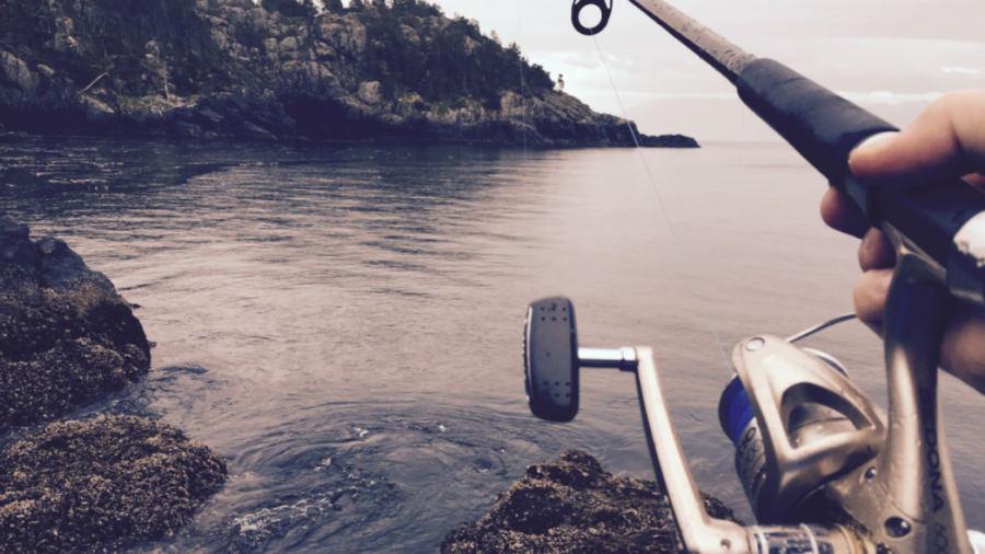 pêche automne