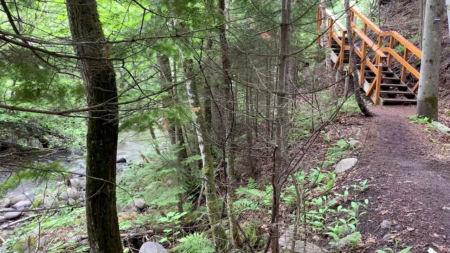 Explorer ce sentier caché à Saint-Joseph-de-la-Rive dans Charlevoix
