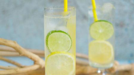 monsieur-cocktail-gin-tonic